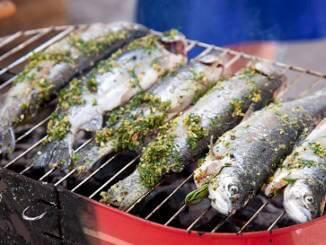Frische Forellen eignen sich hervorragend für den Grill